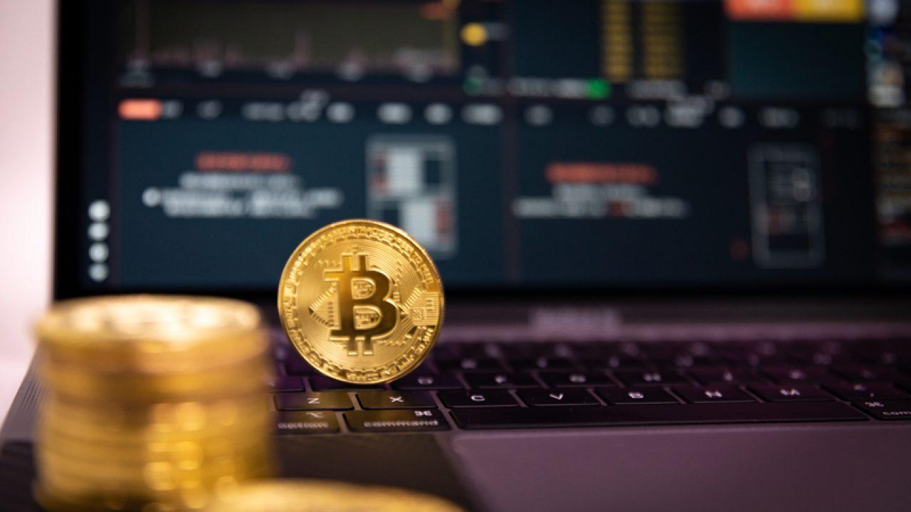 cryptocurrency bull piac)